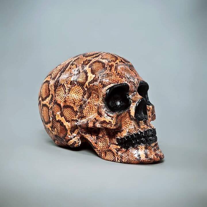 Skull.A (3)