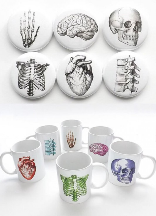 Art Altered Anatomy Collection