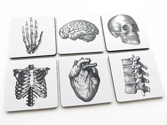 anatomy coasters (2)