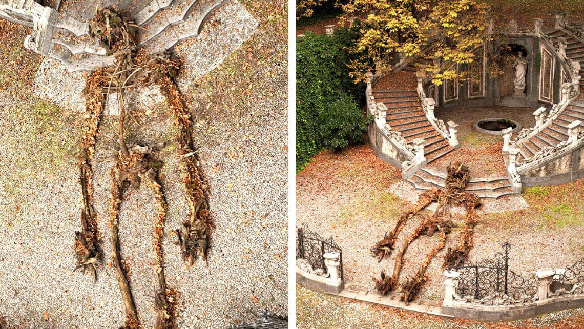Skeleton Made From Dead Trees