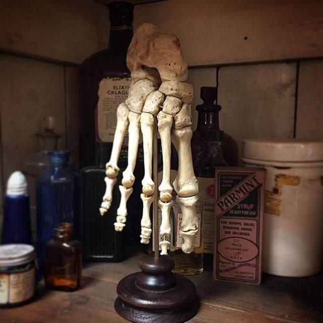 Real human foot