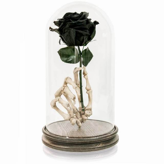 rose in an authentic human bone hand